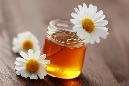 jar of herbal honey with camomille flower - sweet fod